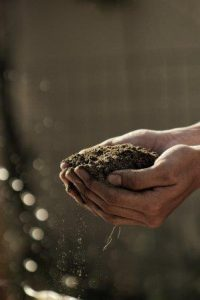 Wipes for farmers dirt in hand